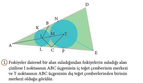 9. Sınıf Matematik Beceri Temelli Etkinlik Kitabı Cevapları Sayfa 189 Cevabı