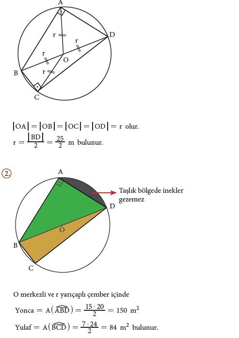 9. Sınıf Matematik Beceri Temelli Etkinlik Kitabı Cevapları Sayfa 201 Cevabı