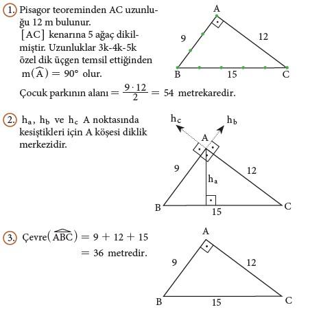 9. Sınıf Matematik Beceri Temelli Etkinlik Kitabı Cevapları Sayfa 204 Cevabı