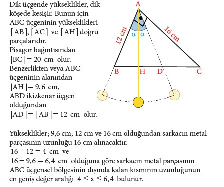 9. Sınıf Matematik Beceri Temelli Etkinlik Kitabı Cevapları Sayfa 208 Cevabı